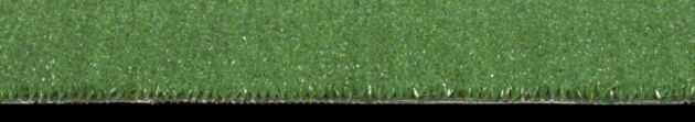 Shaw Arbor View (s) Collection, Color 00300 Grass Clippings, Indoor/Outdoor/Grass Carpet