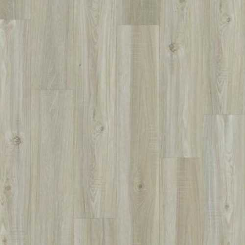 0925V Impact 306C Color: Washed Oak 509