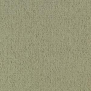 Color Accents 54584 Color 62104 Light Taupe Shaw Broadloom