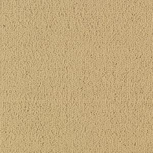 Color Accents 54584 Color 62122 Flax Shaw Broadloom