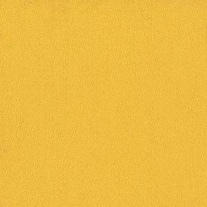 Color Accents 54584 Color 62201 Citrus Shaw Broadloom