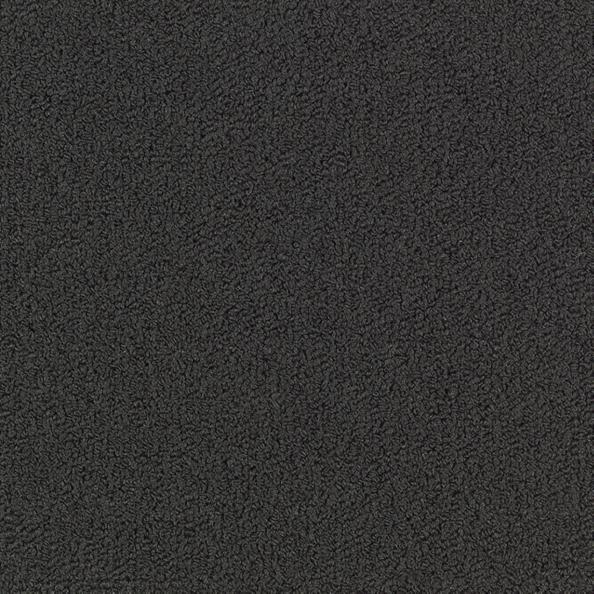 Color Accents 54584 Color 62505 Black Shaw Broadloom