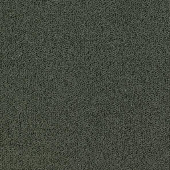Color Accents 54584 Color 62549 Lava Shaw Broadloom