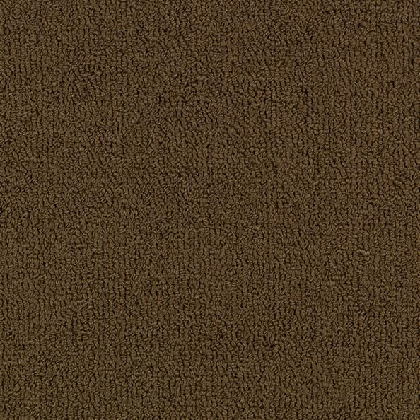 Color Accents 54584 Color 62750 Coffee Shaw Broadloom