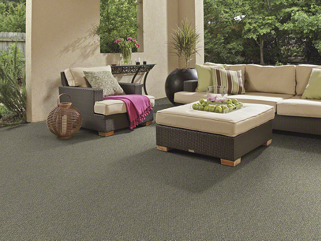 Shaw Natural Path Collection, Color 00400 Riverview, Indoor/Outdoor/Grass Carpet