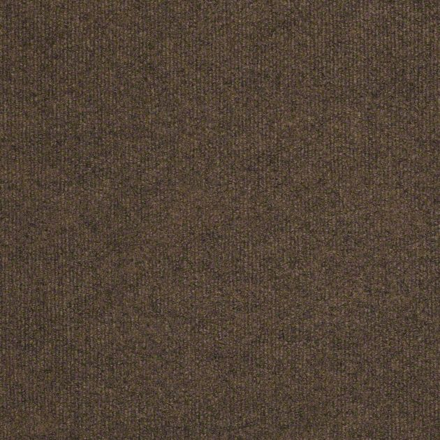Shaw Windsurf Collection, Color  00701 Bramble, Indoor/Outdoor/Grass Carpet