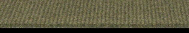 Shaw Summer Stock Collection, Color 00300 Olive Amber, Indoor/Outdoor/Grass Carpet