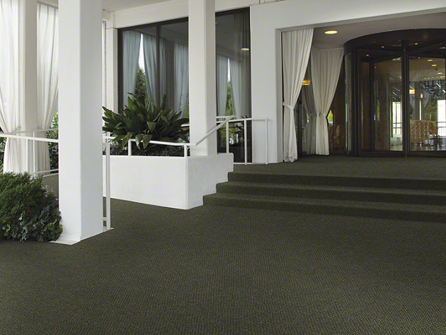Shaw Succession Collection, Color  00300 Crushed Olive, Indoor/Outdoor/Grass Carpet