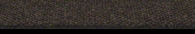 Shaw Succession Collection, Color 00703 Dark Earth, Indoor/Outdoor/Grass Carpet