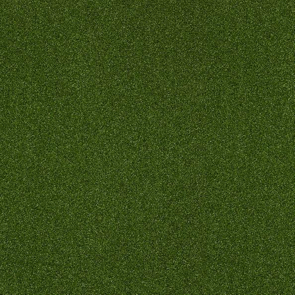 54716 Intensify Performance Turf Collection Color 00301 Green