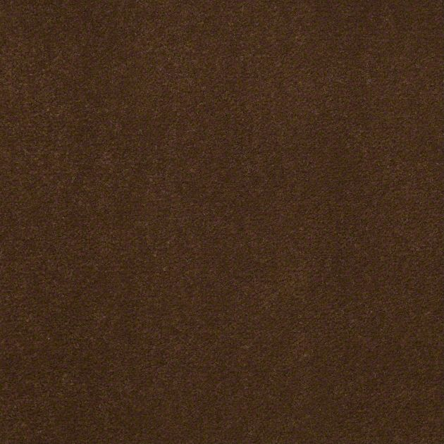 Carpet Cove Base, Color 56722, 5 inch