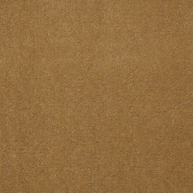 Carpet Cove Base, Color 79240, 12 inch