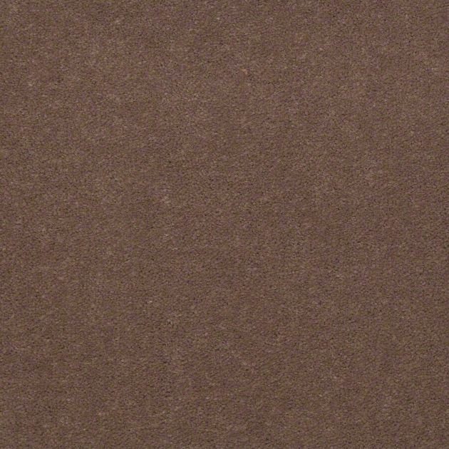 Carpet Cove Base, Color 79741, 6 inch