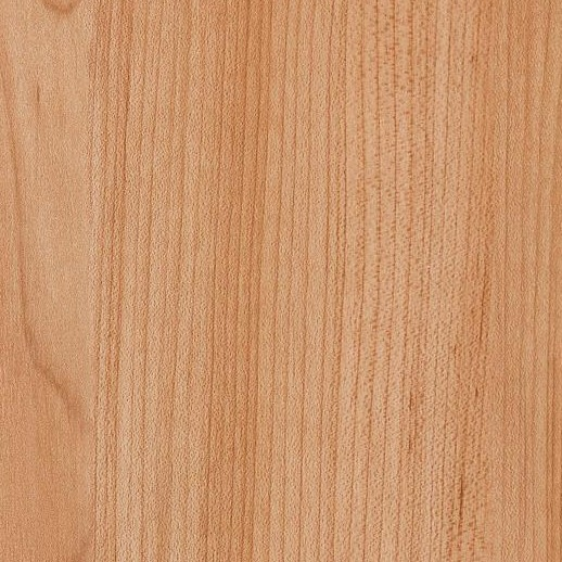 "North Ridge 6"" I207V Color 02506 Honey Oak"
