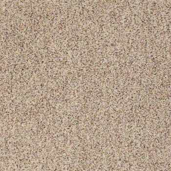 Anderson Tuftex-Serendipity I Berber Color: Tweed 0121B