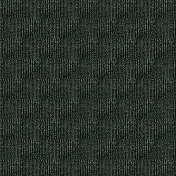TrafficPro Interlace 17 Broadloom Color: Black Ice