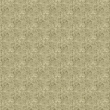 TrafficPro Interlace 17 Broadloom Color: Ivory
