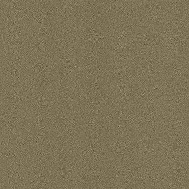 TrafficPro Dilour 15 Broadloom Color: Taupe